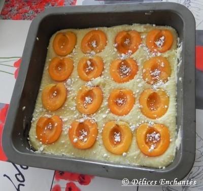 Carré abricot avant cuisson